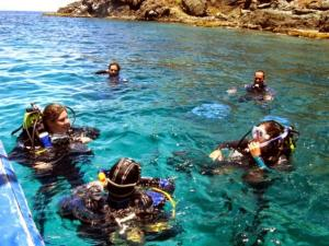 Snorkeling & Diving Tour At Los Frailes Islands Packages
