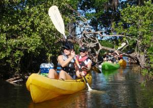 Kayak Tour In La Restinga Lagoon National Park Packages