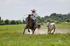 Horse-riding Safari Tour Packages